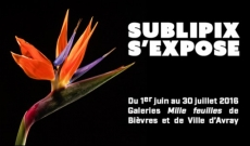 SubliPix s'expose